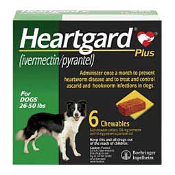 6 ct (26-50 lbs) Heartgard Plus Chewables for Dogs