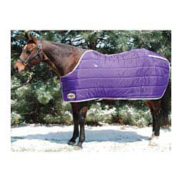 Purple/Silver Medium Weight Stable Horse Blanket