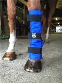 Universal Leg Cooling Wrap for Horses