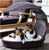 Outdoor Dog Chaise Lounger