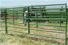 Powder River 1600 Tube Cattle Panel