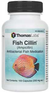 250 mg/100 ct Fish Cillin