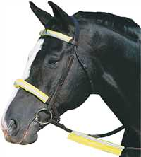 Yellow Reflective Bridle Kit