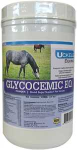 Glycocemic EQ Powder
