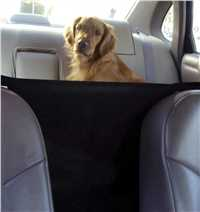 Black Front Seat Safety Barrier