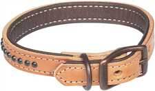 Outlaw Collection Dog Collars