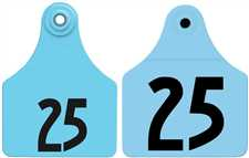 Double Panel Ear Tags - Large Female + Large Male Numbered
