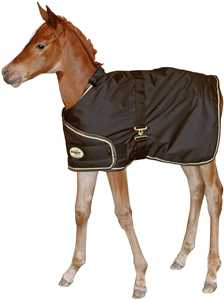 Adjustable Foal Turnout Horse Blanket