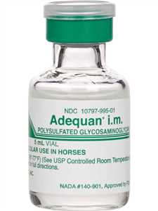 Adequan IM for Horses
