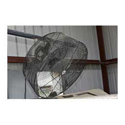 Sullivan's Show Barn Fan Item # 24044