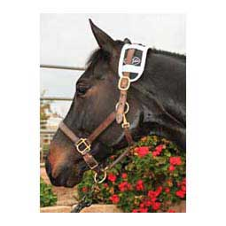 Magnetic Therapy Horse Poll Piece Item # 32754