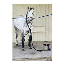 Ice Horse Water Therapy System Mackinnon