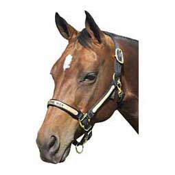 Personalized Horse Halter Brookside