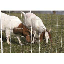ElectroStop Plus Electric Netting Double Spike for Sheep & Goats Item # 37097