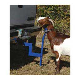 Equalizer Hitch for Goats