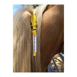I.C.E. ManeStay Equine Emergency ID Item # 43470