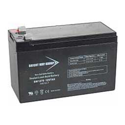 Replacement Battery for Solarguard 155 Item # 43653