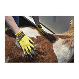 Rub & Scrub Grooming Gloves Item # 44065