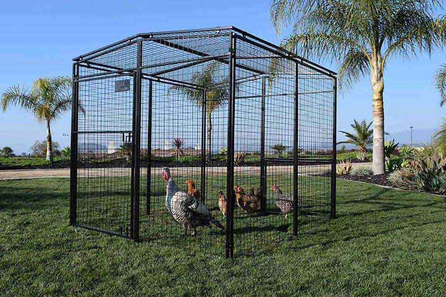 Universal Walk-In Pen Rugged Ranch - Coops Pens | Poultry Equipment ...