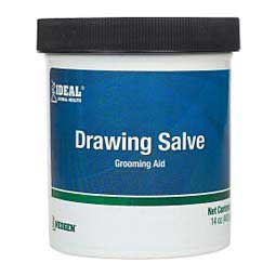 Drawing Salve for Dogs & Horses