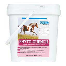 Phyto-Quench Antioxidant for Horses  Uckele Health & Nutrition