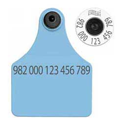 HDX EID Ear Tags + Large Blank Matched Set Allflex