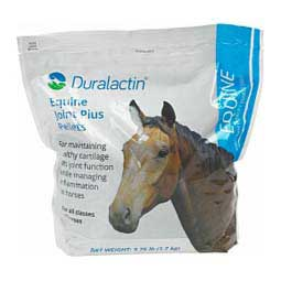 Duralactin Equine Joint Plus PRN Pharmaceutical