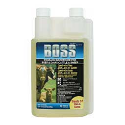 Boss Pour-On