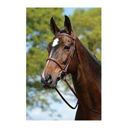 Plain Raised Padded Bridle with Laced Reins