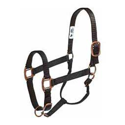Personalized Copper Creek Horse Halter Weaver Leather