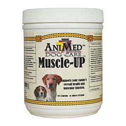 Muscle-Up Animed