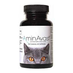 AminAvast Kidney Support for Dogs & Cats Biohealth Solutions
