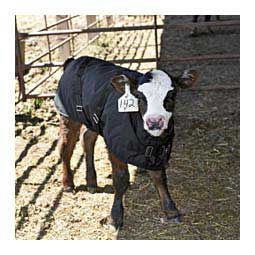 Calf Warming Blanket