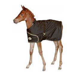 Adjustable Foal Turnout Horse Blanket Brookside
