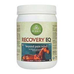 Recovery EQ Joint Supplement for Horses  Purica