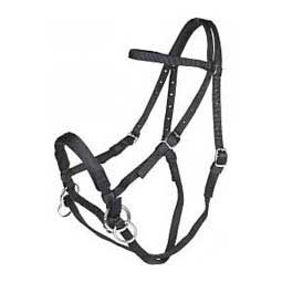 Nylon Bitless Horse Bridle