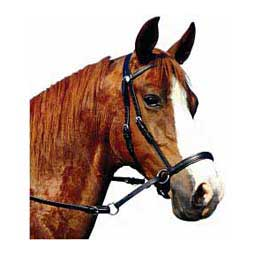 Leather Bitless Horse Bridle Dr Cook Bitless Bridle