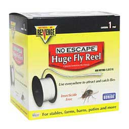 Fly Traps - Fly Traps, Bait & Premise
