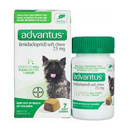 Advantus Imidacloprid Soft Chews Oral Flea Treatment for Dogs Bayer