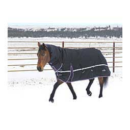 10K Cross Trainer Turnout Horse Blanket w/ Hood Classic Equine