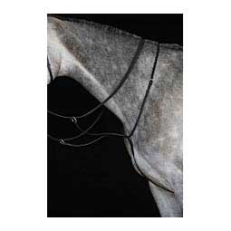 Collegiate Running Martingale Collegiate
