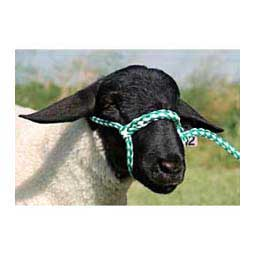 Green/White Poly Rope Sheep Halter
