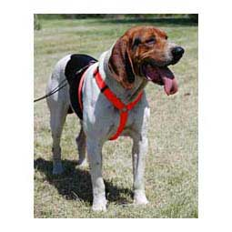 Scott's Adjustable Harness Hot Orange 1'' (22-38'' chest) - Item # 13326