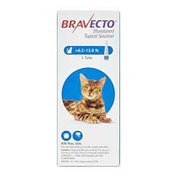 Bravecto Flea and Tick Topical Solution for Cats 6.2-13.8 lbs 250 mg 1 ct - Item # 1371RX