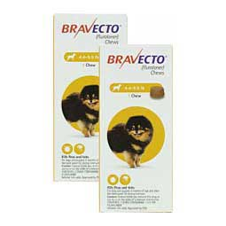Bravecto Flea & Tick Treatment for Dogs 4.4-9.9 lbs 112.5 mg 2 ct - Item # 1386RX