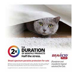 Bravecto Plus for Cats 2.6-6.2 lbs (1 ct) - Item # 1529RX