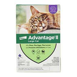 Advantage II for Cats 6 pk (cats over 9 lbs) Purple - Item # 18146