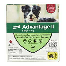 Advantage II for Dogs 4 pk (21-55 lbs) Red - Item # 18149