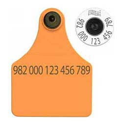 HDX EID Calf Ear Tags + Large Blank Matched Set Orange - Item # 18387