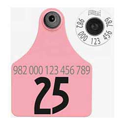 HDX EID Calf Ear Tags + Large Numbered Matched Set Pink - Item # 18388